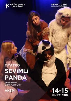 Sevimli Panda -1001 Sanat -  AKSM